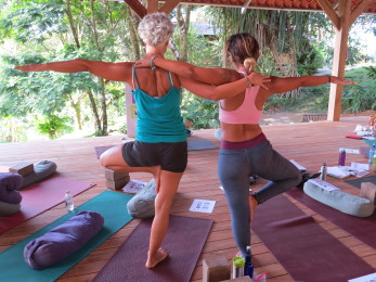 Tree Pose Yoga Sessions